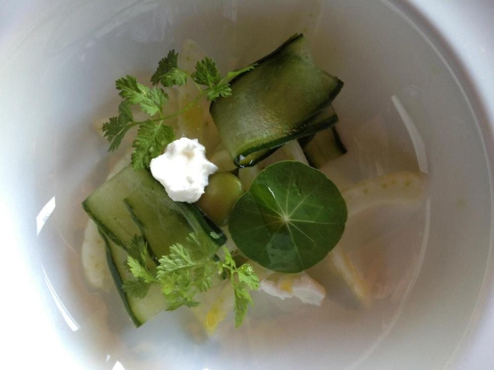 Goats Curd, Cucumber and Broad Bean