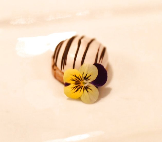 Chocolate Dipped Espresso Marshmallow Biscotti